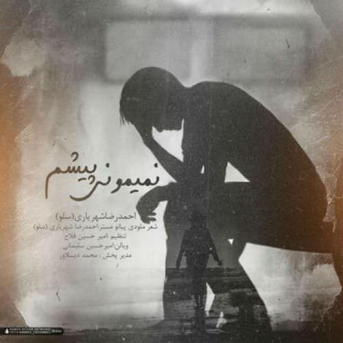 http://dl.rasanejavan.com/RadioJavan%201395/Azar%2095/20/Ahmad-Solo-Nemimooni-Pisham-1.jpg