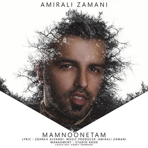 http://dl.rasanejavan.com/RadioJavan%201395/Bahman%2095/16/Amirali-Zamani-Mamnonetam.jpg