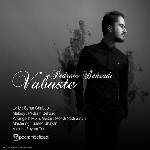 http://dl.rasanejavan.com/RadioJavan%201395/Mehr%2095/26/Pedram-Behzadi.jpg