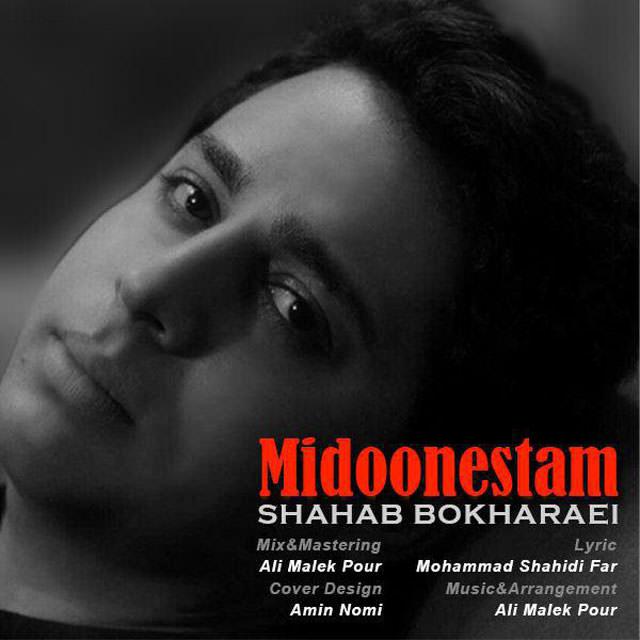 http://dl.rasanejavan.com/RadioJavan%201395/Shahrivar%2095/02/n/Shahab%20Bokharaei%20-%20Midoonestam.jpg