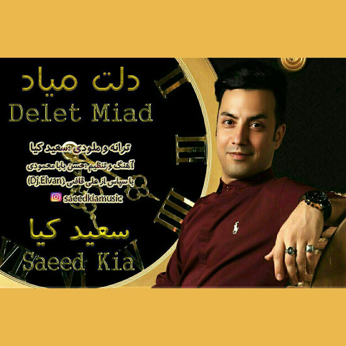 http://dl.rasanejavan.com/radio97/04/30/Saeed%20Kia%20-%20Delet%20Miad.jpg