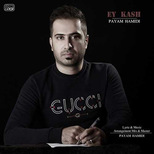 http://dl.rasanejavan.com/rasane/1397/azar97/09/cfpc_payam-hamidi---ey-kash.jpg